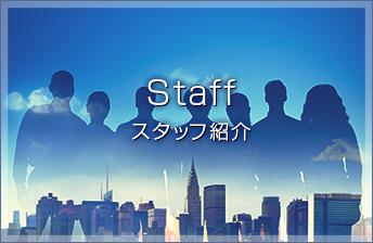 Staff スタッフ紹介